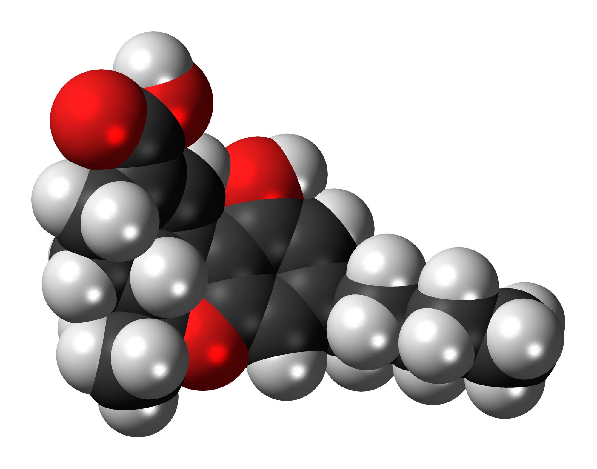 Dr. Frankel on THC-A