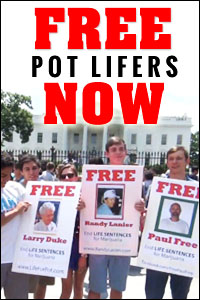 Free Pot Lifers Now!