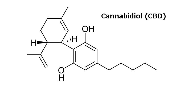 Cannabidiol alleviates eosinophilic esophagitis