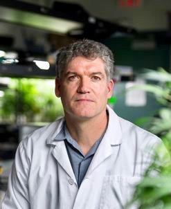 Cannabis research is budding