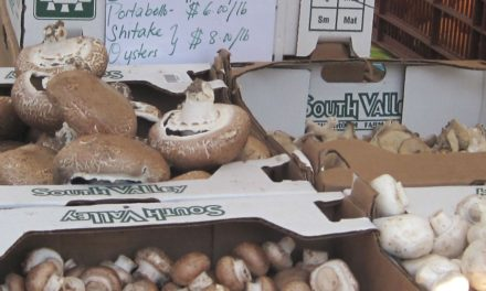 You must remember this (re: mushrooms)