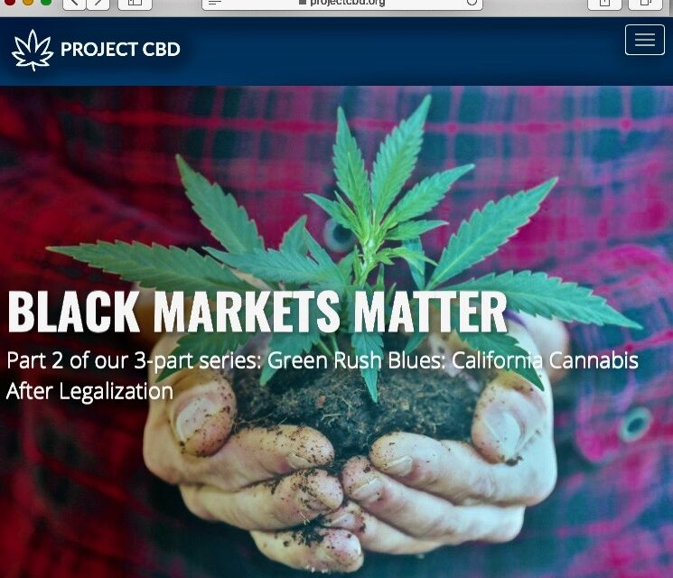 Protected: Project CBD Mocked Black Lives Matter