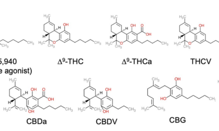 Activity of 9 Cannabinoids Measured